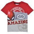 T-shirts m. korte ærmer Desigual  21SBTK08-3005
