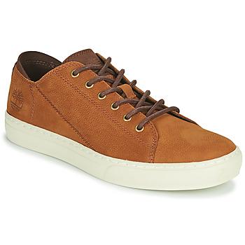 Sko Herre Lave sneakers Timberland ADV 2.0 CUPSOLE MODERN OX Cognac