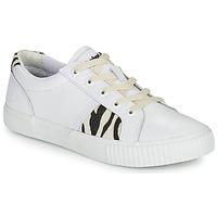 Sko Dame Lave sneakers Timberland SKYLA BAY OXFORD Hvid