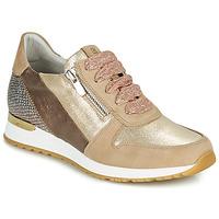 Sko Dame Lave sneakers Dorking VIOLA Guld