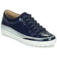 Sko Dame Lave sneakers Caprice 23654-889 Blå