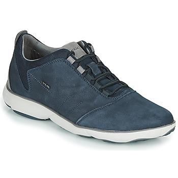 Sko Herre Lave sneakers Geox U NEBULA Blå