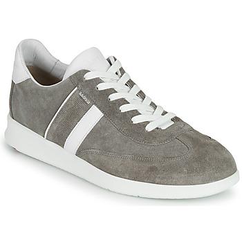 Sko Herre Lave sneakers Lloyd BURT Grå