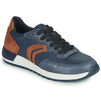 Sko Dreng Lave sneakers Geox J ALBEN BOY Blå