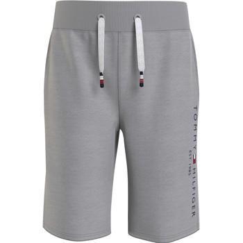 textil Dreng Shorts Tommy Hilfiger BAHAMA Grå