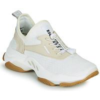 Sko Dame Lave sneakers Steve Madden MATCH Hvid / Beige