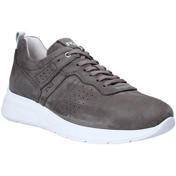 Sko Herre Lave sneakers Nero Giardini P900920U Grå