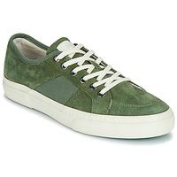 Sko Herre Lave sneakers Globe SURPLUS Grøn