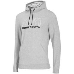 textil Herre Sweatshirts 4F BLM017 Grå