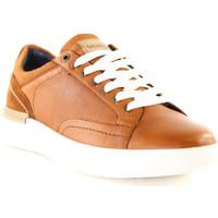 Sko Herre Lave sneakers Wrangler WM01181A Brun