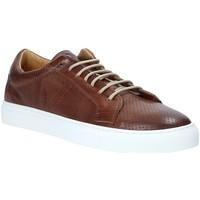 Sko Herre Lave sneakers Rogers DV 08 Brun