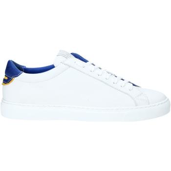 Sko Herre Lave sneakers Rogers DV 01 hvid