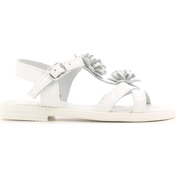 Sko Børn Sandaler Lulu LT080056L hvid