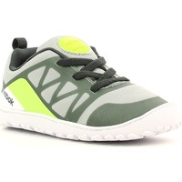 Sko Børn Lave sneakers Reebok Sport AQ8832 Grå
