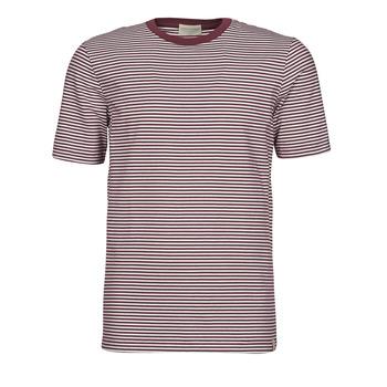 textil Herre T-shirts m. korte ærmer Scotch & Soda 160847 Rød / Hvid