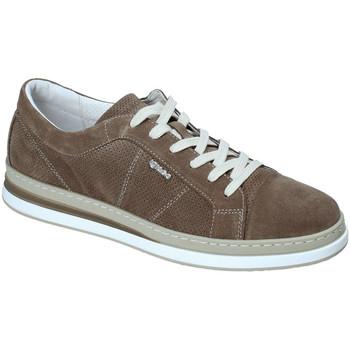 Sko Herre Lave sneakers IgI&CO 3138322 Grøn