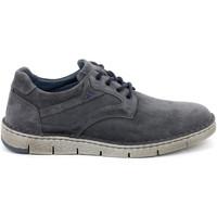 Sko Herre Lave sneakers Grunland SC4956 Blå