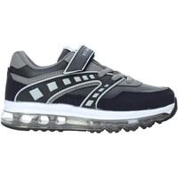 Sko Børn Lave sneakers U.s. Golf W19-SUK541 Blå