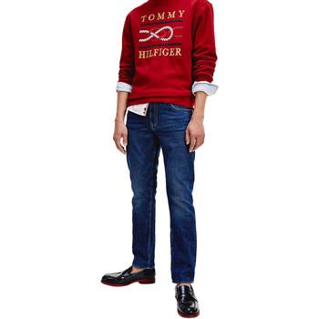 textil Herre Smalle jeans Tommy Hilfiger MW0MW13557 Blå