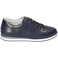 Sko Herre Lave sneakers IgI&CO 3138100 Blå