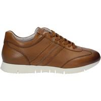 Sko Herre Lave sneakers Maritan G 140658 Brun