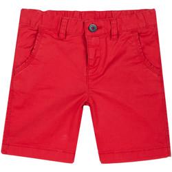 textil Børn Shorts Chicco 09052874000000 Rød