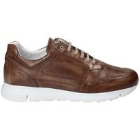 Sko Herre Lave sneakers Exton 332 Brun