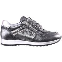 Sko Børn Lave sneakers Nero Giardini A830630F Grå