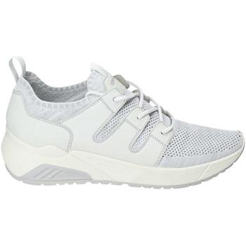 Sko Herre Lave sneakers IgI&CO 3129322 hvid