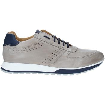 Sko Herre Lave sneakers Rogers 5065 Grå