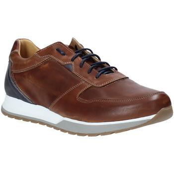 Sko Herre Lave sneakers Rogers 5068 Brun
