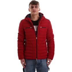 textil Herre Dynejakker Gaudi 921BU35019 Rød
