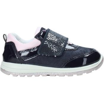 Sko Børn Lave sneakers Primigi 4362500 Blå