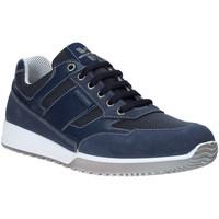 Sko Herre Lave sneakers Valleverde 53861 Blå