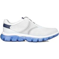 Sko Herre Lave sneakers CallagHan 42700 hvid