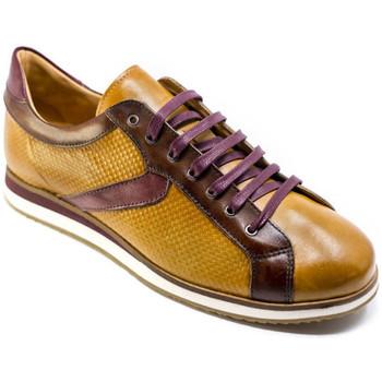 Sko Herre Lave sneakers Exton 831 Brun