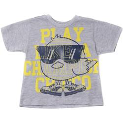 textil Børn T-shirts m. korte ærmer Chicco 09006918000000 Grå