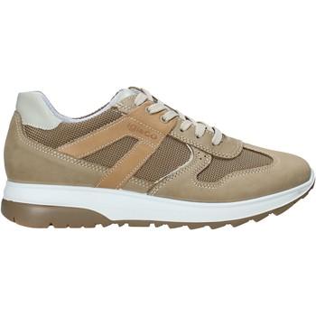 Sko Herre Lave sneakers IgI&CO 5129633 Beige