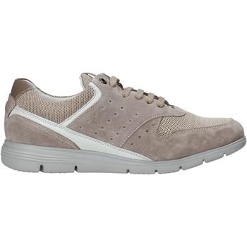 Sko Herre Lave sneakers Impronte IM01000A Beige