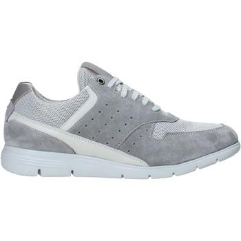 Sko Herre Lave sneakers Impronte IM01000A Grå