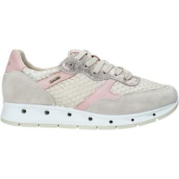 Sko Dame Lave sneakers IgI&CO 5161366 Beige