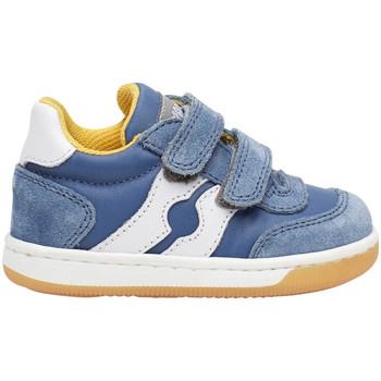 Sko Børn Lave sneakers Falcotto 2014666 01 Blå
