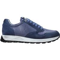 Sko Herre Lave sneakers Exton 741 Blå