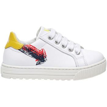 Sko Børn Lave sneakers Naturino 2014868 01 hvid