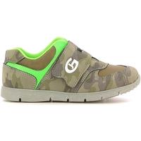 Sko Børn Lave sneakers Grunland PP0157 Grøn