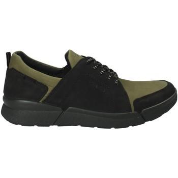 Sko Herre Lave sneakers IgI&CO 2126322 Grøn