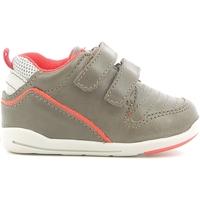 Sko Børn Lave sneakers Chicco 01056499000000 Brun
