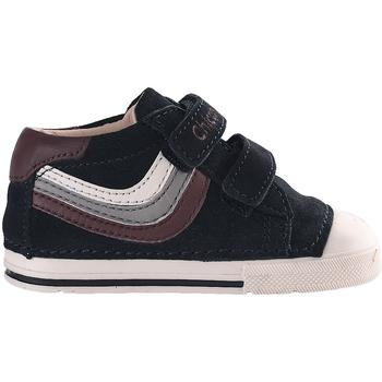 Sko Børn Lave sneakers Chicco 01060434 Blå