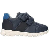 Sko Børn Lave sneakers Nero Giardini A823300M Blå