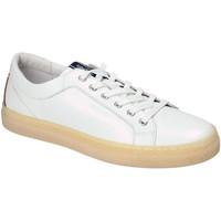 Sko Herre Lave sneakers IgI&CO 3134500 hvid